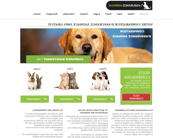 assurance animaux gmf